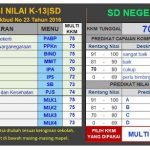Download Aplikasi Raport K13 Kelas 1 2 3 4 5 6 SD Semester 2